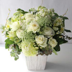 冬の、白バラをメイン:a172322